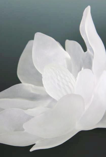 detail-magnolia1